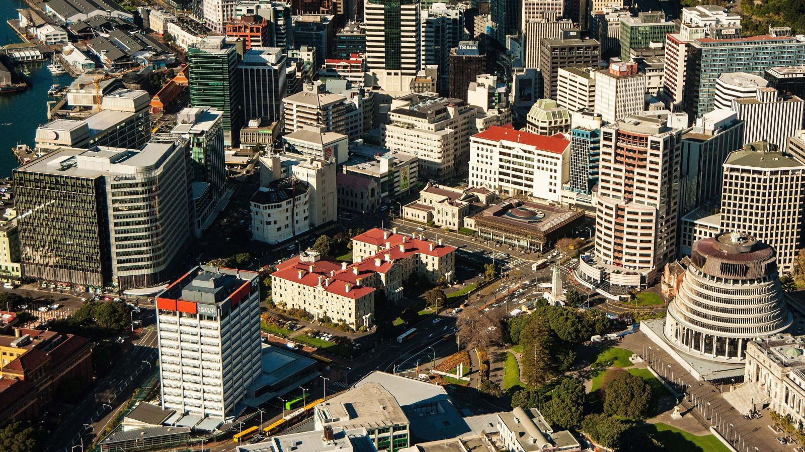Bird's eye view of Wellington City under sunshine.