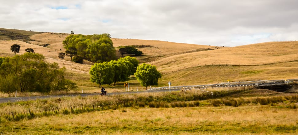 An image of dry hills with green trees and a cyclist on a rural road.