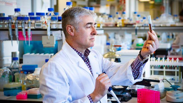 David Comoletti in his lab