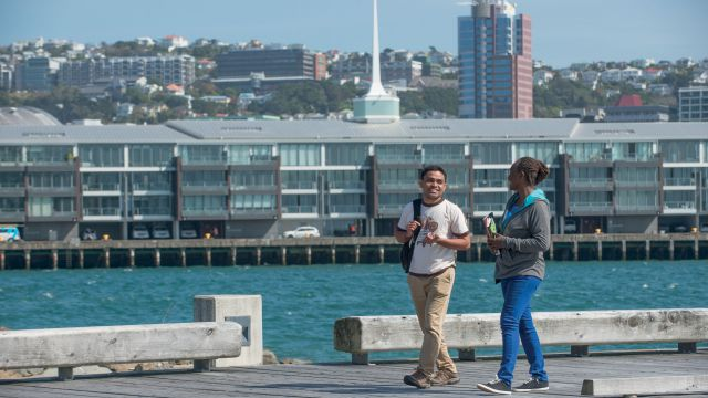 International students socialising and studying along the iconic Wellington waterfront and Oriental Bay