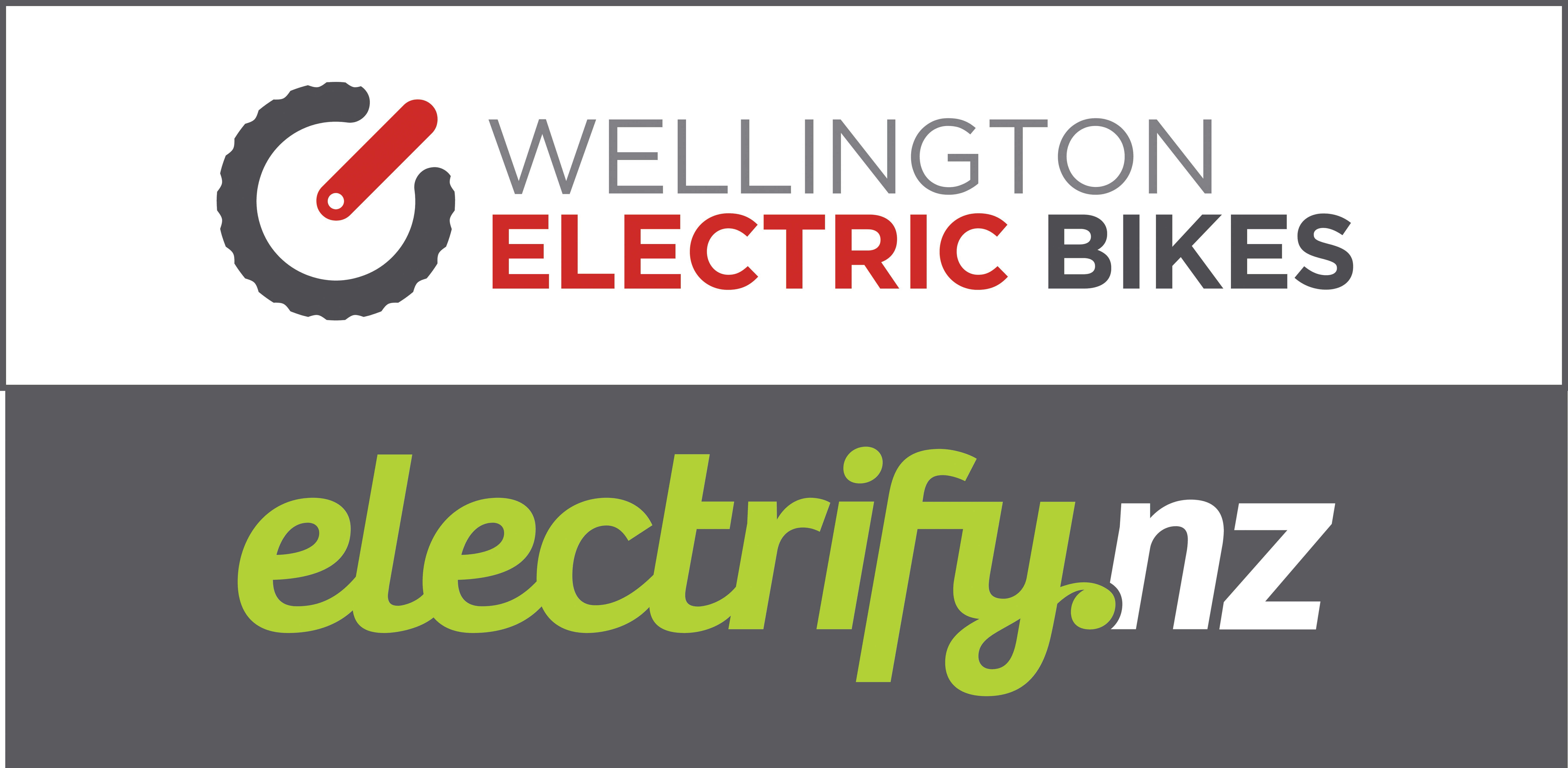 ElectrifyNZ logo