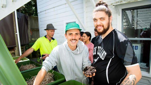Te Herenga Waka Marae worm farm