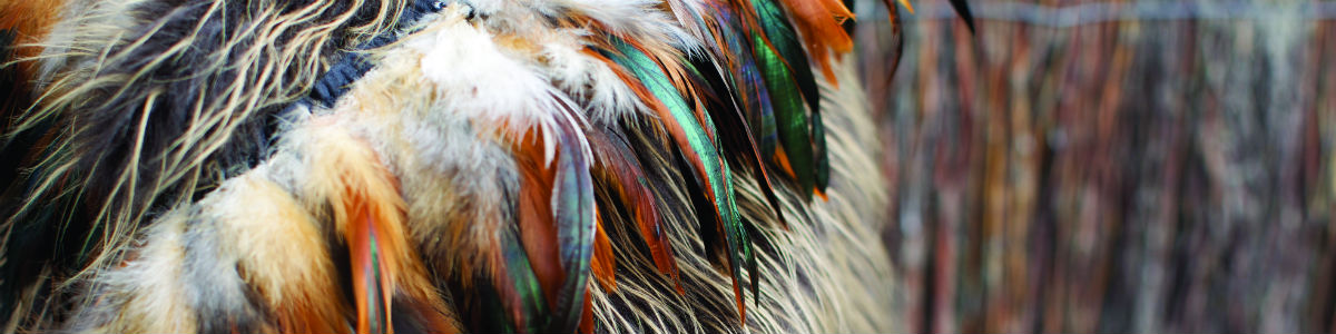 Banner image - A close up of feathers on a garment.