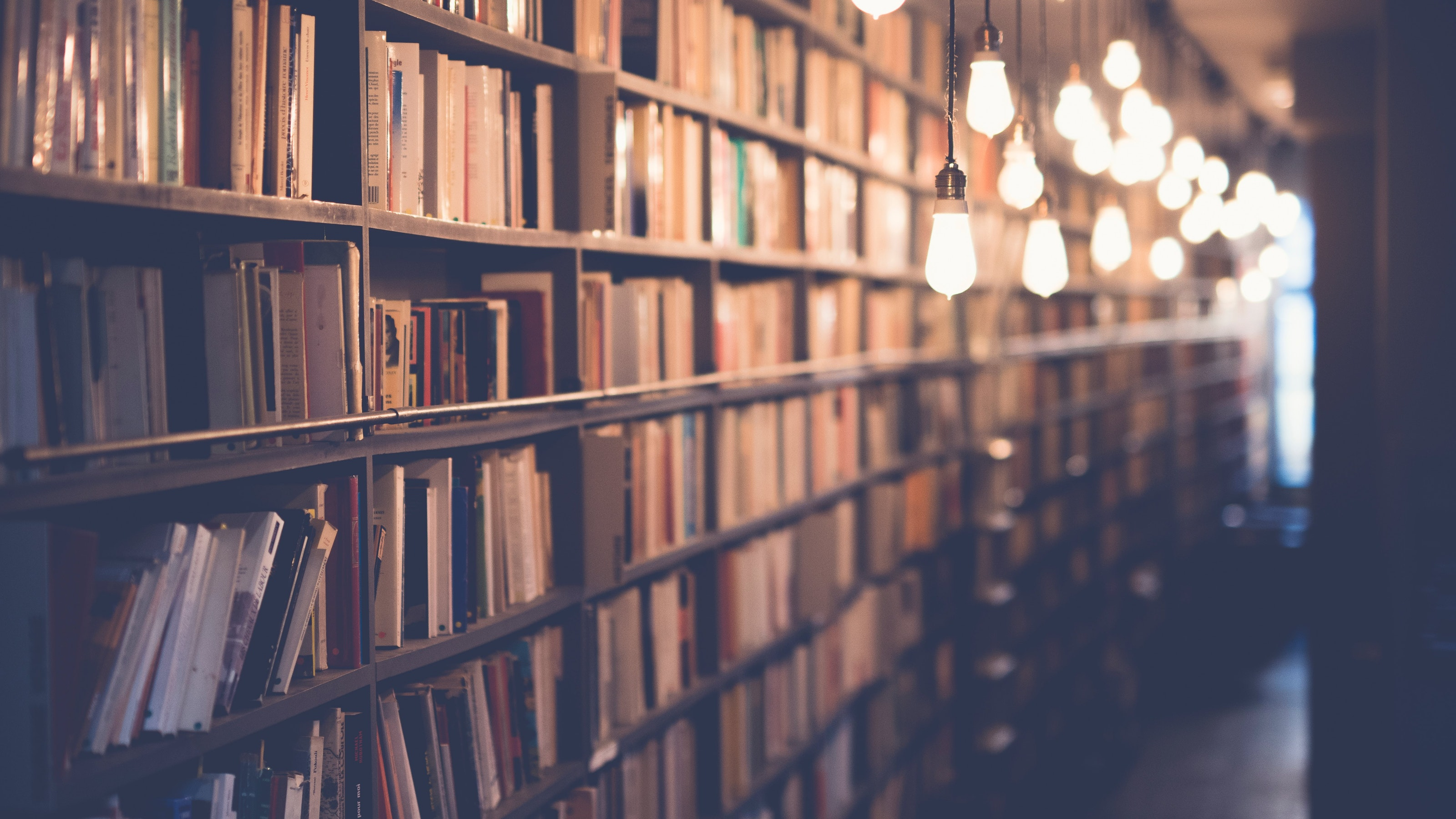 Stacks of books on a tall shelf, lit by several hanging lightbulbs.