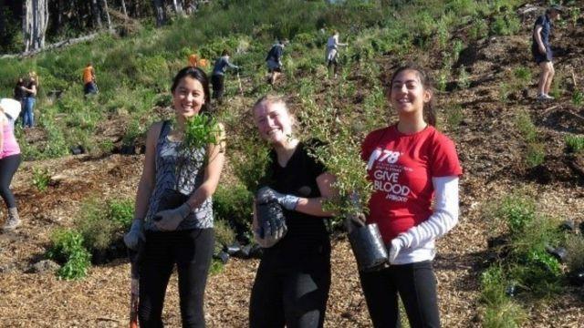 Three students volunteering to plant trees.