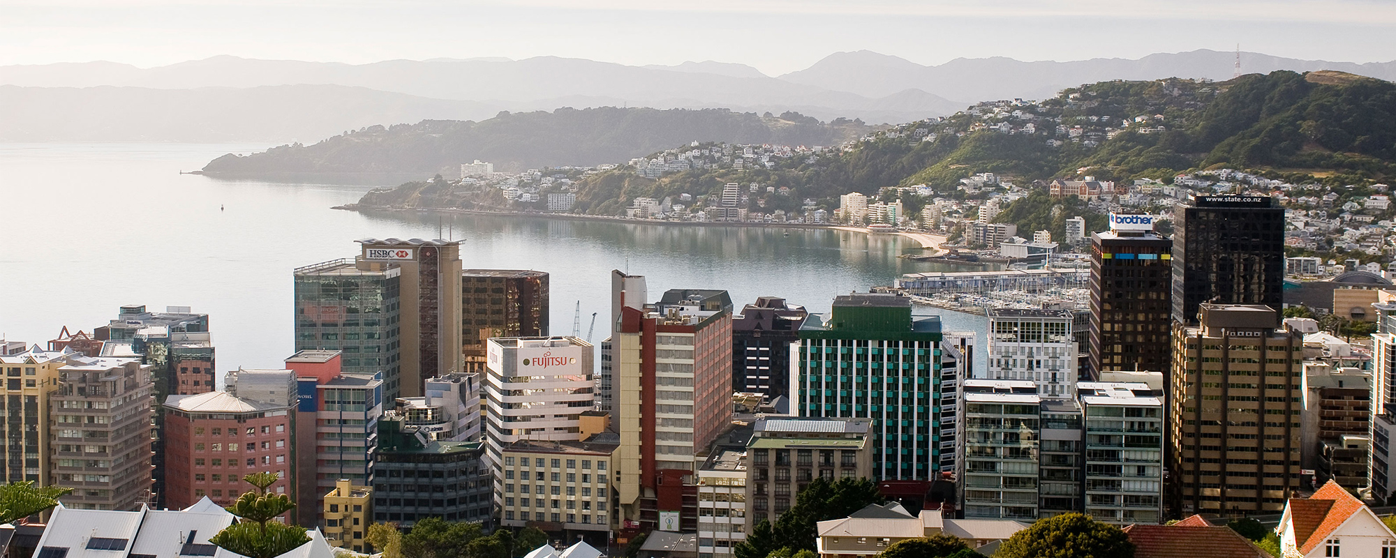 Aerial view of Wellington city
