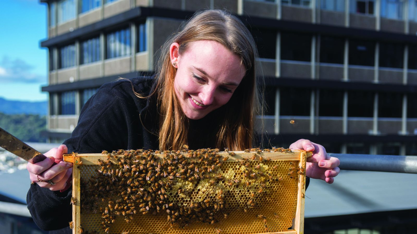 Jess holds a panel of bees and honey. Several bees fly around her. Behind her is blue sky and a building.