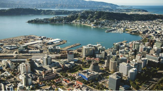 Bird's eye view of Wellington City.