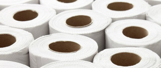 Picture of toilet paper rolls.