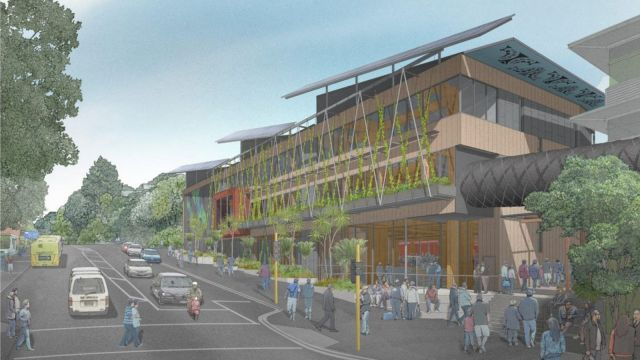 building with green wall and māori designs