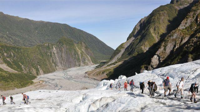 Group walking on Fox Glacier, New Zealand.