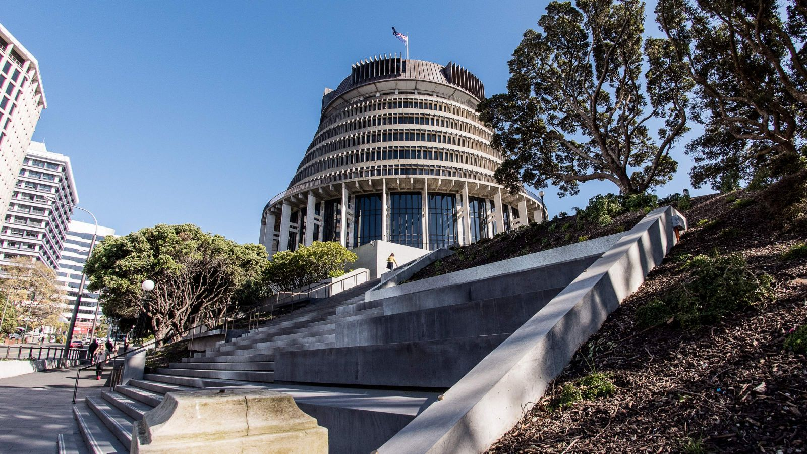 A staircase leading to Parliament in Wellington, with trees either side and clear blue sky on a sunny day
