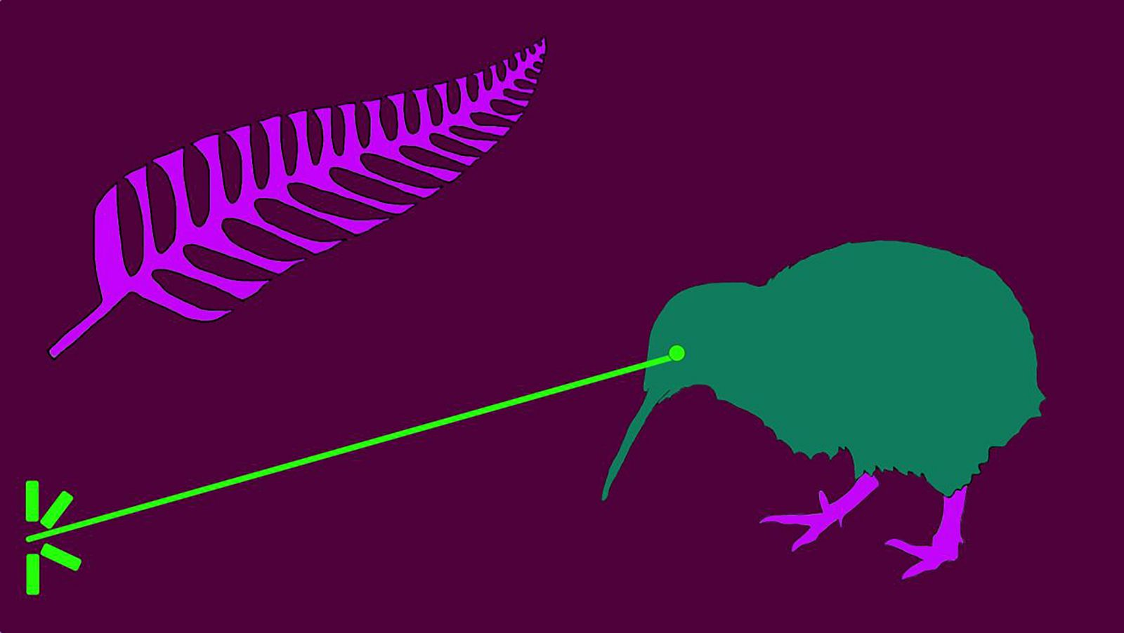 illustrated fern and kiwi bird