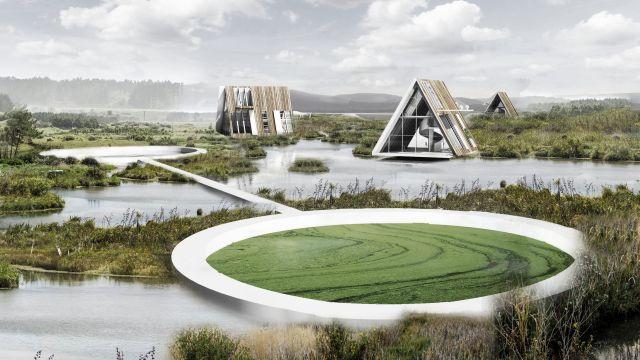 Master of Landscape Architecture student work render