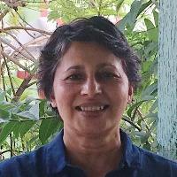Dr Sita Venkateswar profile-picture photograph