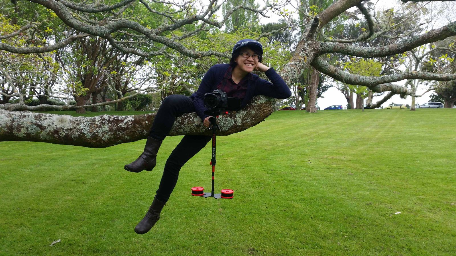 Michelle Kan from Fish and Swallow, perched in a tree holding a camera.
