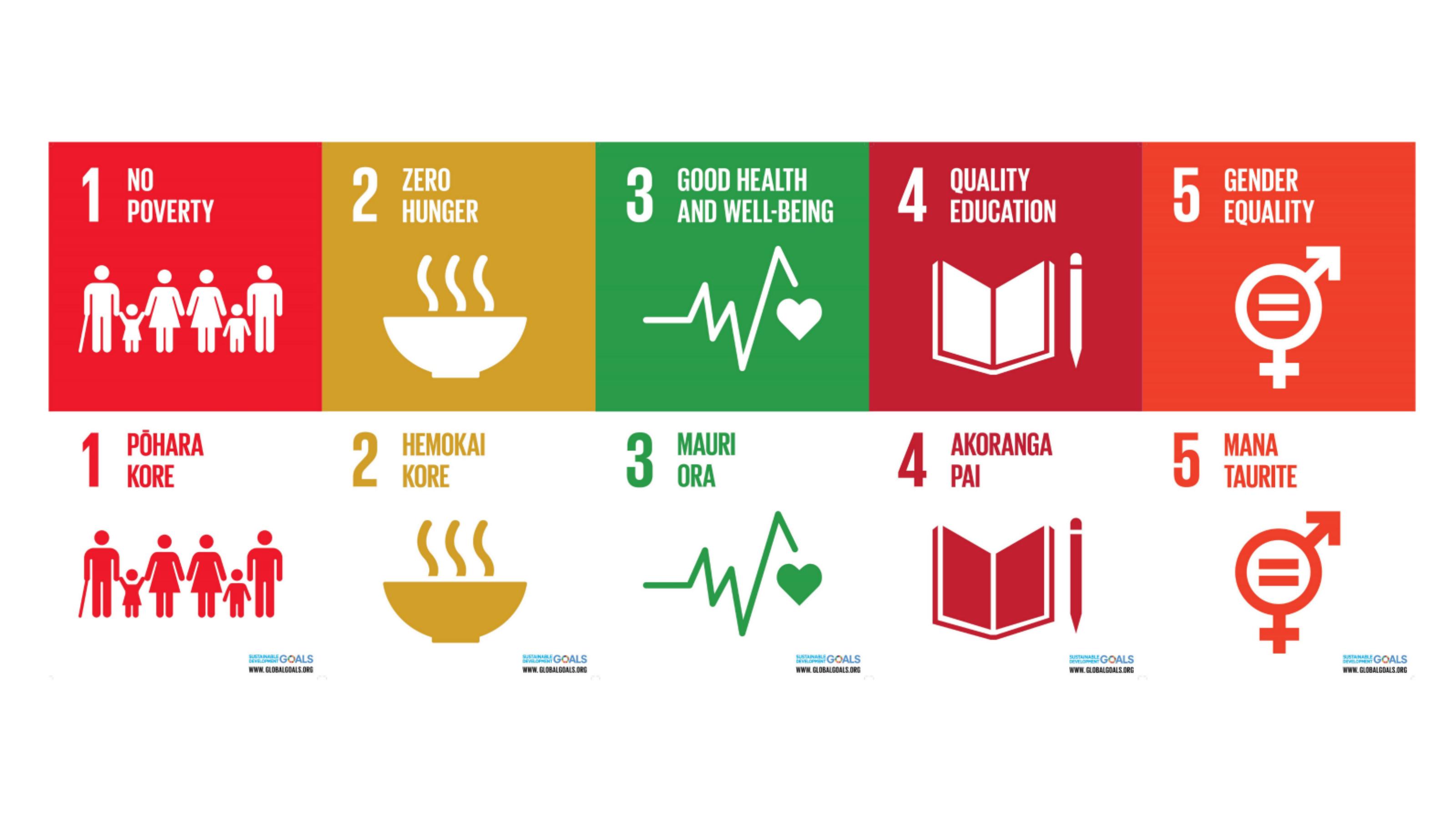 Five Sustainable Development Goals