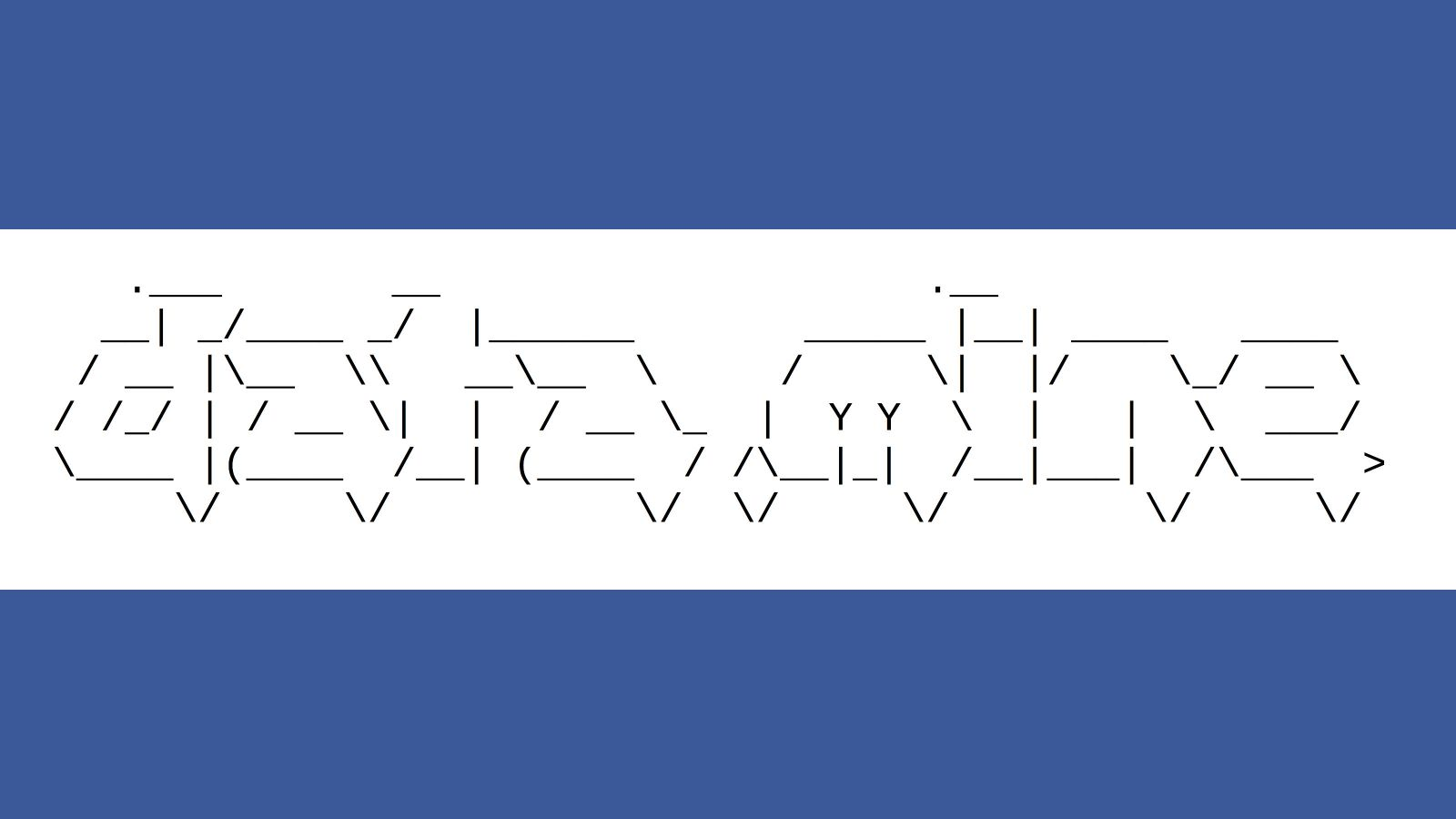 Data Mine logo on white background with wide blue bands above and below