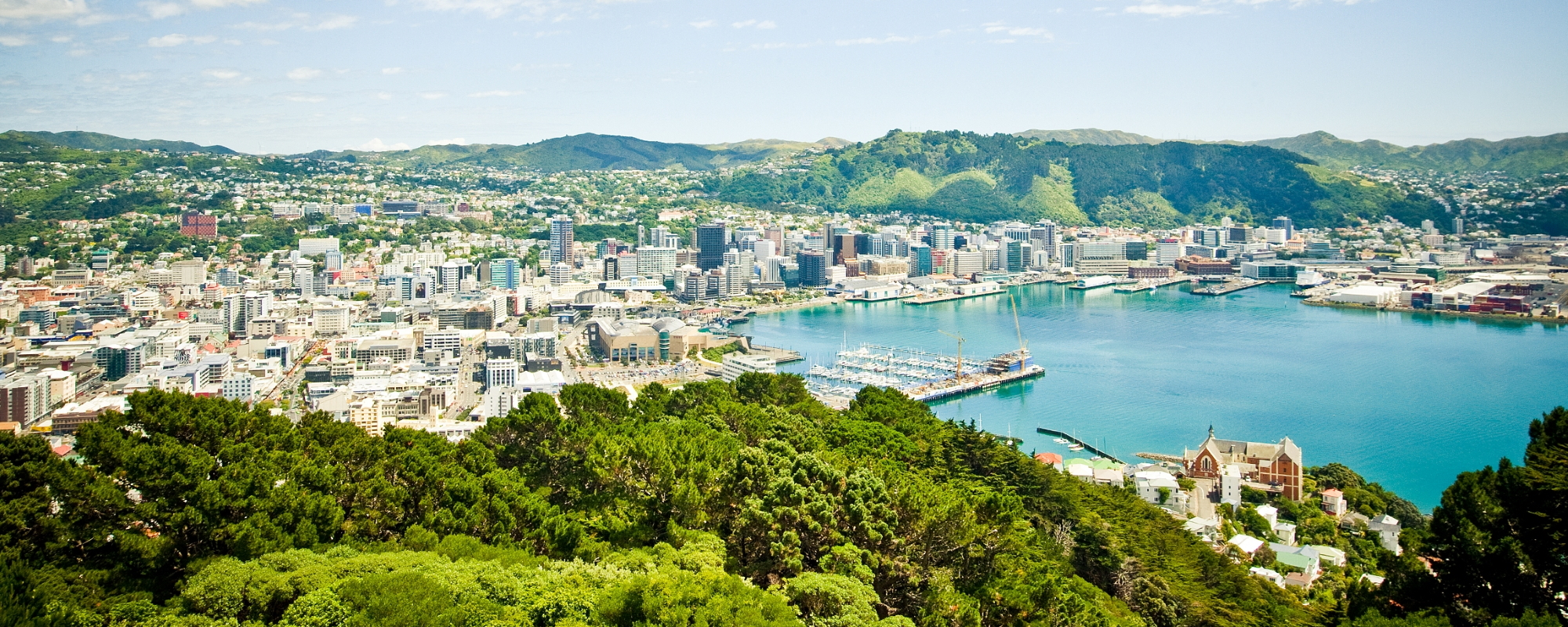 Wellington as seen from Mount Victoria