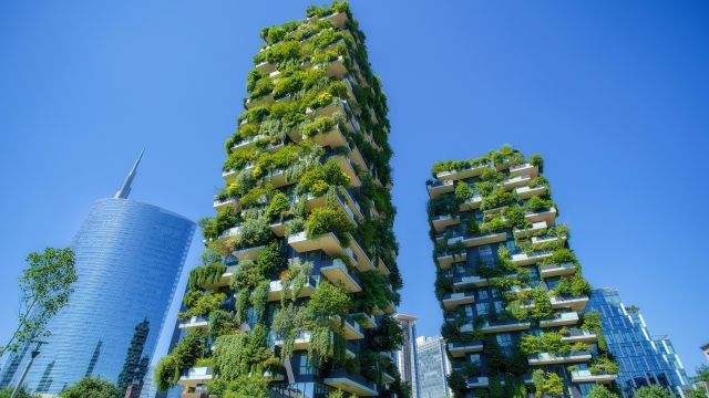Towers covered in abundant plants.