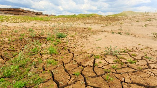 Dried arable landscape with cracks in soil