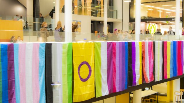 Rainbow flags hanging in front of students walking in the Hub