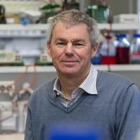 Prof Graham Le Gros profile-picture photograph
