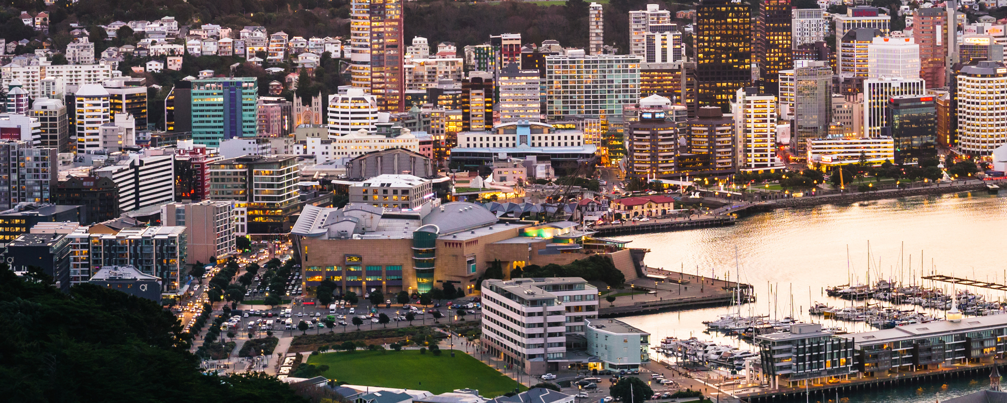 Wellington evening from above