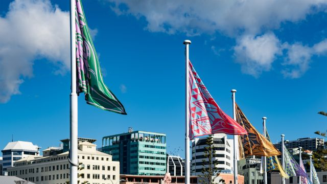 Colourful matariki flags designed by David Hakaraia flying in Frank Kitts Park with Wellington City in the background