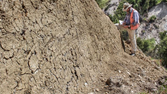 Researchers found curved slickenlines at nine exposures of the Kekerengu fault in New Zealand. Photo by Kate Clark/GNS Science.