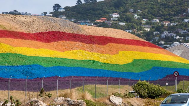 Pride flag painted on the side of a hill.