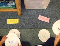 classifying-tumu