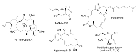 Chemical compounds synthesised by the Organic Synthesis group