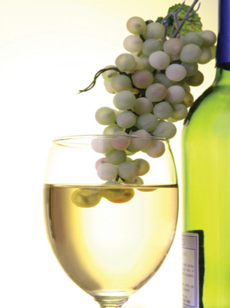 Sauvignon Blanc grapes and wine