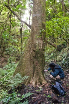 Bio-prospecting in the New Zealand bush